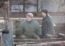 Donetsk, Ucrania - febrero, 20, 2013: Trabajo de las mujeres en la madera del sawing Foto de archivo