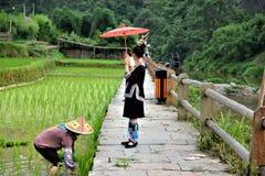 Dong stam med paraplyer och traditionella dräkter i porslin royaltyfri fotografi