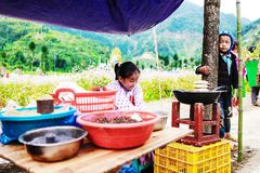 DONG VAN, HA GIANG, VIETNAM, il 14 novembre 2017: Bambini di Hmong etnico in Ha Giang, Vietnam Ha Giang è domestico principalment Immagine Stock