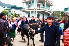 DONG VAN, HA GIANG, VIETNAM, le 18 novembre 2017 : Personnes de Hmong, Dong Van montagneux, Ha Giang, bétail commerçant, marché e photographie stock libre de droits
