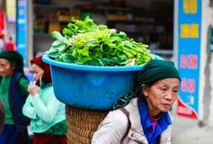 DONG VAN HA GIANG, VIETNAM, November 18th, 2017: Oidentifierade kvinnor för etnisk minoritet för H-`-mong bär med grönsaker Ha Gi arkivbild