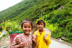 DONG VAN, HA GIANG, VIETNAM, November 14th, 2017: Unidentified ethnic minority kids with baskets of rapeseed flower in Hagiang Royalty Free Stock Photography