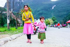 VAN, HA GIANG, VIETNAM, November 18th, 2017: Unidentified ethnic minority kids with baskets of rapeseed flower in Hagiang Royalty Free Stock Photo