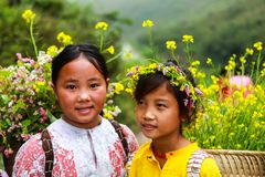 DONG VAN, HA GIANG, VIETNAM, November 14th, 2017: Unidentified ethnic minority kids with baskets of rapeseed flower in Hagiang Stock Photos