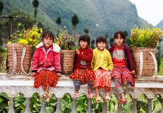 VAN, HA GIANG, VIETNAM, November 18th, 2017: Unidentified ethnic minority kids with baskets of rapeseed flower in Hagiang Royalty Free Stock Photography