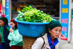 DONG VAN, HA GIANG, VIETNAM, November 18th, 2017: Unidentified H`mong ethnic minority women carry with vegetables. Ha Giang stone. Stock Photography