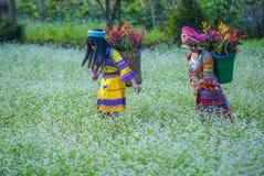 Hmong ethnic minority in Vietnam