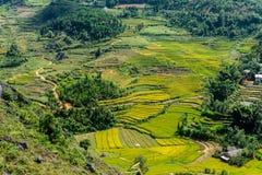 Dong Van, Wietnam (brzęczenia Giang) obrazy stock