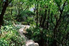 Dongao island scenery Stock Image