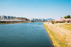 Dongchon riverside park and apartment buildings at spring in Daegu, Korea stock photo