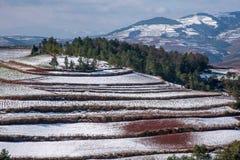 Dongchuan, campo nevoso della terra rossa del Yunnan nei terrazzi concavi del punteggio Fotografie Stock