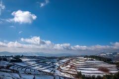 Dongchuan, campo nevoso della terra rossa del Yunnan nei terrazzi concavi del punteggio Fotografia Stock