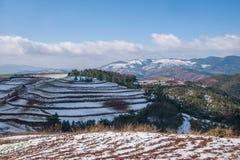 Dongchuan, campo nevoso della terra rossa del Yunnan nei terrazzi concavi del punteggio Immagine Stock Libera da Diritti