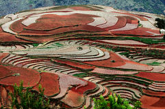 Dongchuan Red Land Royalty Free Stock Photo