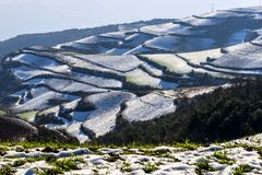 Dongchuan Red Land Stock Image