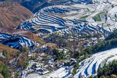 Dongchuan Red Land fight Macan Royalty Free Stock Image
