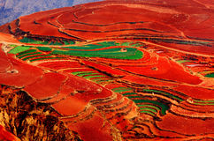 Dongchuan Red Land resort Royalty Free Stock Photography