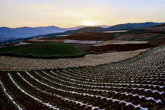 Dongchuan Red Land Sunset Royalty Free Stock Images