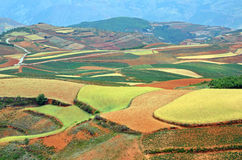 Dongchuan Red Land Royalty Free Stock Image