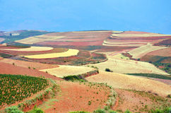 Dongchuan Red Land Royalty Free Stock Photos