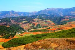 The Dazzling Dongchuan Red Soil Scenic Area. Dongchuan Red Soil Scenic Area is located in a warm and humid environment. Iron in the soil is slowly deposited by royalty free stock image
