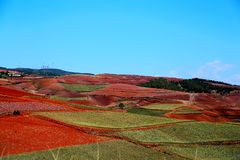 The Dazzling Dongchuan Red Soil Scenic Area. Dongchuan Red Soil Scenic Area is located in a warm and humid environment. Iron in the soil is slowly deposited by royalty free stock photography