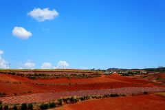 The Dazzling Dongchuan Red Soil Scenic Area. Dongchuan Red Soil Scenic Area is located in a warm and humid environment. Iron in the soil is slowly deposited by royalty free stock images