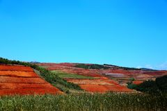 The Dazzling Dongchuan Red Soil Scenic Area. Dongchuan Red Soil Scenic Area is located in a warm and humid environment. Iron in the soil is slowly deposited by royalty free stock photo