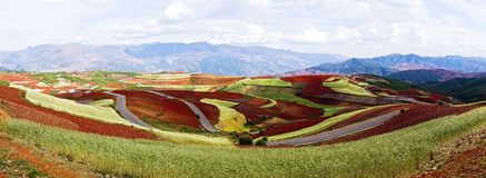 Dongchuan, terra do vermelho de Yunnan Imagem de Stock Royalty Free