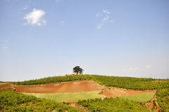 Dongchuan, Yunnan Photo stock