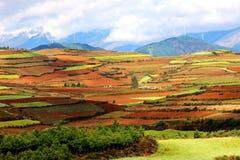 Dongchuan Yunnan, Kina Arkivfoto