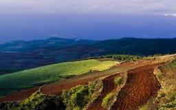 Dongchuan Yunnan rött land Royaltyfri Foto