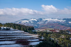 Dongchuan, Yunnan Red Land snowy field in the Score concave Terraces Royalty Free Stock Images