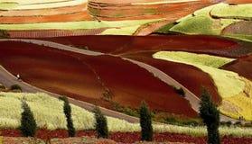 Dongchuan, Yunnan red land Royalty Free Stock Images
