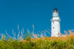 Dongju Matsu Lighthouse Tall Grass Foreground Royalty Free Stock Photo