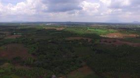 Dongnai Vietnam stock video footage