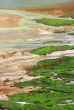 donguz jeziorny orun slime zdjęcie royalty free