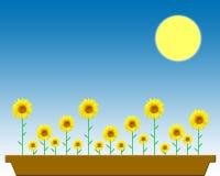 doniczce kwiaty ilustracji