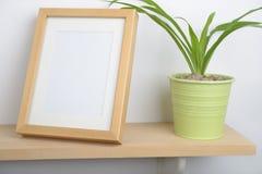 Doniczkowa roślina na półce Zdjęcia Royalty Free