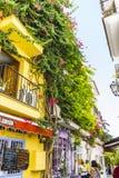 Doniczkowe rośliny i kwiaty na ulicach Marbella, Malaga zdrój Obrazy Stock