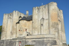 Donjon or Castle in Niort, France Royalty Free Stock Images
