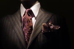 Donker bruin gestreept jasje, purpere band en handkerc Stock Fotografie