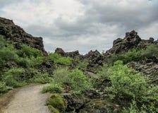Donker de vormingengebied van de lavarots en groen Ijslands bos op Myvatn-gebied, Noordelijk IJsland, Europa stock afbeeldingen