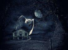 Donker en eng Achtervolgd Herenhuis met uil stock illustratie