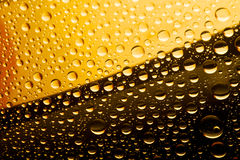 Donker en licht bier Royalty-vrije Stock Foto
