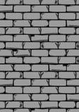 Donker Grey Wall Stock Fotografie