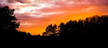 Donker silhouet van een boslandschap bij zonsondergang, zonsondergang die een kleurrijke gloed in de hemel en de wolken geven stock foto's