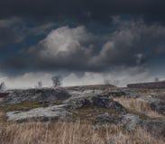 Donker somber mistig landschap royalty-vrije stock fotografie