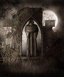 Donker standbeeld met wijnstokken royalty-vrije illustratie