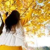 Donkerbruin meisje en gouden bladeren Royalty-vrije Stock Foto